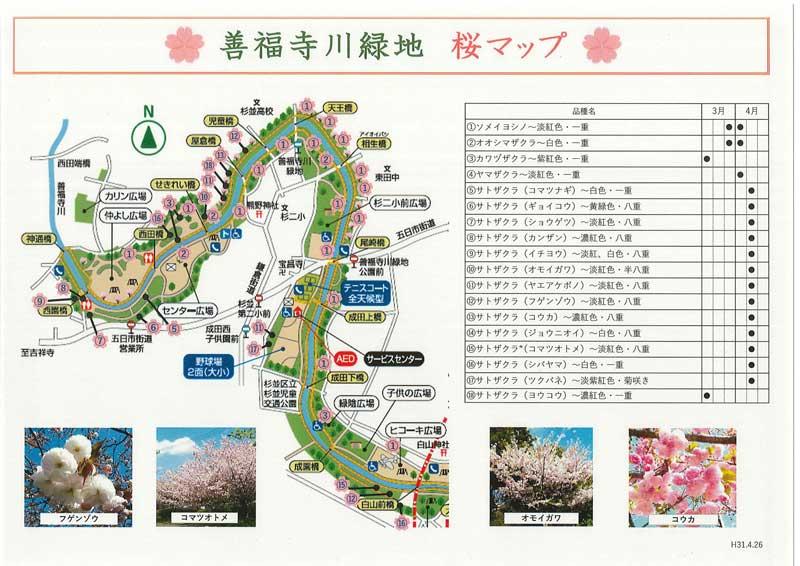 善福寺川桜マップ